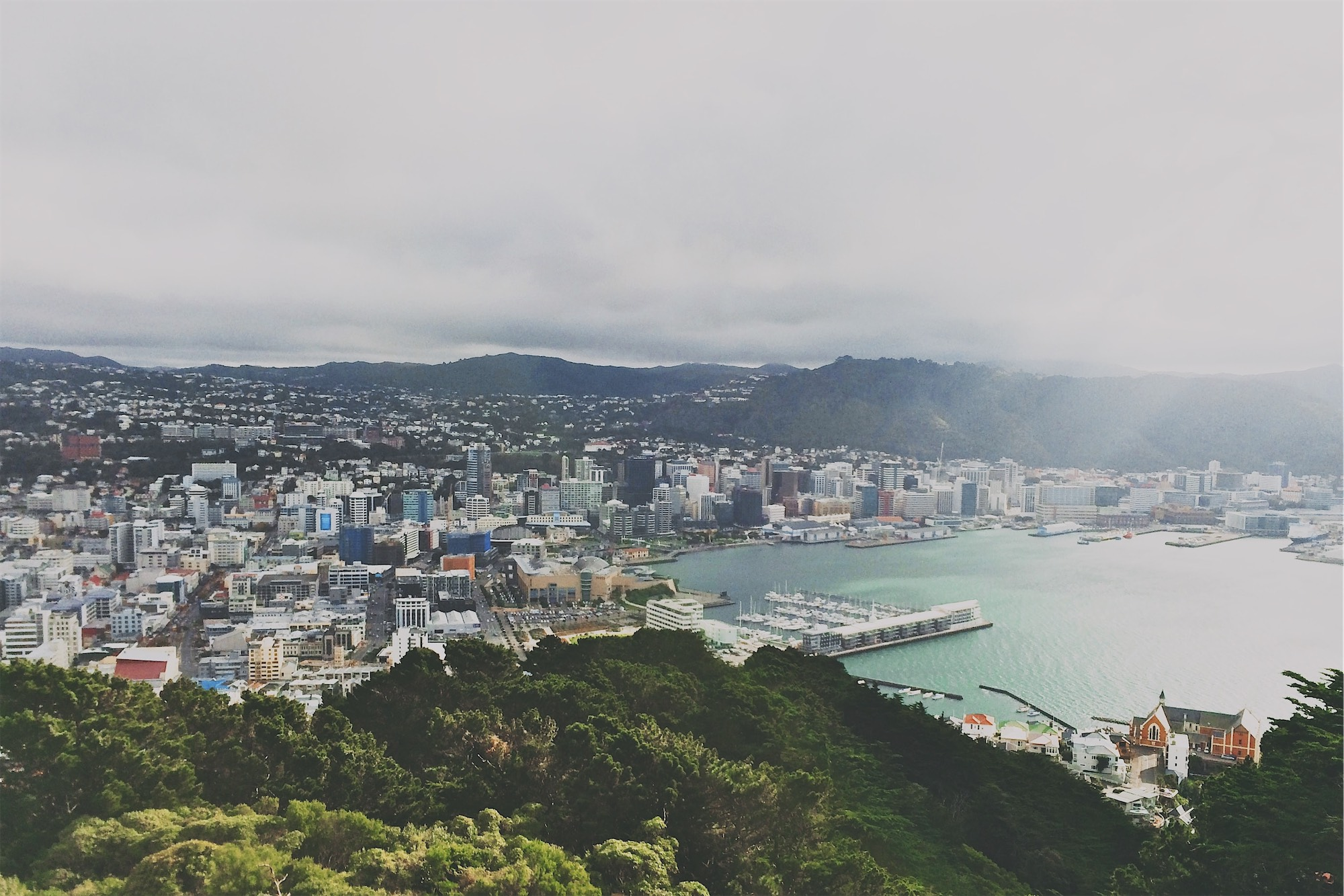 A New Approach to Preparing Communities in Wellington